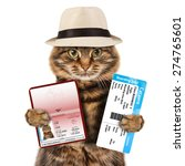 funny cat with passport and... | Shutterstock . vector #274765601