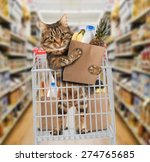 funny cat in the store | Shutterstock . vector #274765685