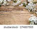cherry blossoms on a wooden... | Shutterstock . vector #274837505