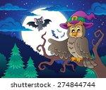 owl topic image 2   eps10... | Shutterstock .eps vector #274844744