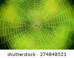 Spider Web Closeup Against A...