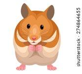 Stock vector hamster 274864655