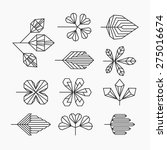 hipster geometrical leaves  set ... | Shutterstock .eps vector #275016674