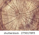 Wooden Cut Texture  Tree Rings