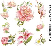 collection of the watercolor... | Shutterstock . vector #275034911