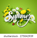 fresh summer background with... | Shutterstock .eps vector #275042939