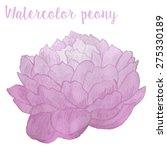 watercolor peony in vector | Shutterstock .eps vector #275330189