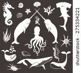 Sea Life  Marine Animals....