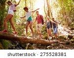 group of friends on walk... | Shutterstock . vector #275528381