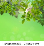 tree leaf on nature background | Shutterstock . vector #275594495