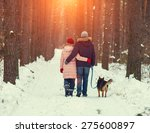Stock photo young couple in love with dog walking in the snowy forest back to camera 275600897
