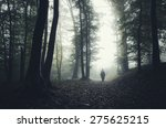 Man Silhouette In Spooky Forest
