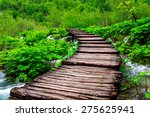 wooden path in national park in ... | Shutterstock . vector #275625941