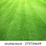 grass field   green grass... | Shutterstock . vector #275734649