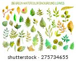 watercolor leaves collection... | Shutterstock .eps vector #275734655