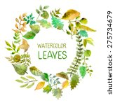 Watercolor Leaves Collection...
