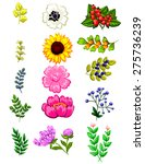 flower set | Shutterstock . vector #275736239