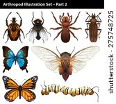 arthropods illustration set... | Shutterstock .eps vector #275748725