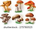 vector illustration of various...   Shutterstock .eps vector #275783525