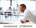 portrait of man in office  side ... | Shutterstock . vector #275800244