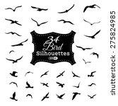 Vector Set Of Bird Silhouettes...