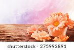 Orange Gerbera Flowers In A...