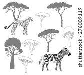 cheetah  zebra and savanna... | Shutterstock .eps vector #276009119