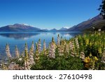 flowers by the lake | Shutterstock . vector #27610498