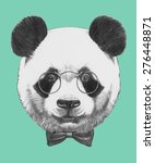 Hand Drawn Portrait Of Panda...