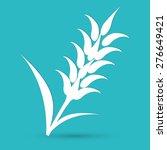 ears of wheat  barley or rye...   Shutterstock .eps vector #276649421
