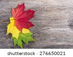 Autumn Maple Leaves On Gray...