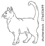 vector outline sketch if a cat... | Shutterstock .eps vector #276653699