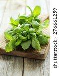 basil leaves on grey wooden...   Shutterstock . vector #276661259