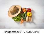 Freshly Harvested Vegetables I...