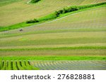 panoramic view of a vineyards | Shutterstock . vector #276828881