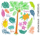 collection of floral tropical... | Shutterstock .eps vector #276833141