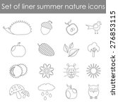 set of linear natural summer... | Shutterstock .eps vector #276853115