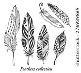 hand drawn stylized feathers... | Shutterstock .eps vector #276939869
