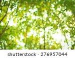 natural green blurred... | Shutterstock . vector #276957044
