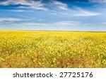 Landscape  Spring Season  Fiel...