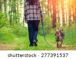 Stock photo young woman with her dog walking in the forest 277391537