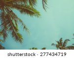 Vintage Toned Palm Tree Over...