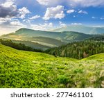 composite landscape with valley with wild grass near conifer forest in high mountains in morning light - stock photo