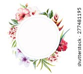 watercolor elements tropical... | Shutterstock . vector #277481195