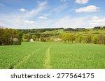landscape of the orlic... | Shutterstock . vector #277564175