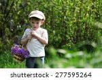 the boy carries a lilac in a... | Shutterstock . vector #277595264