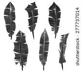 feather set. vector... | Shutterstock .eps vector #277737014