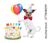Small photo of jack russell dog as a surprise with happy birthday cake ,wearing red tie and party hat ,holding balloons , isolated on white background