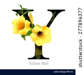 Letter Y  Vector Alphabet With...