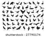 birds silhouettes isolated on... | Shutterstock .eps vector #27790174